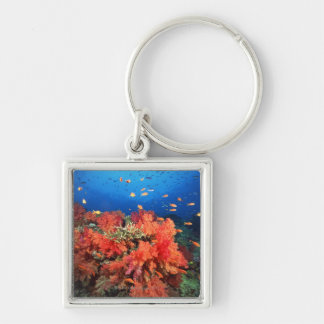 Coral and fish Silver-Colored square keychain