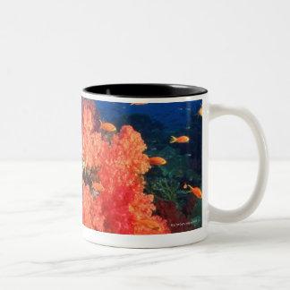 Coral and fish Two-Tone coffee mug