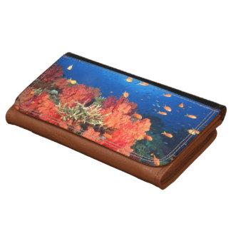Coral and fish wallets