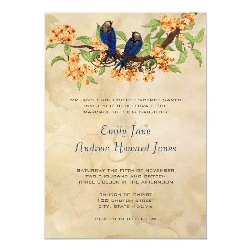 Coral and Navy Vintage Love Birds Tea Stain Card