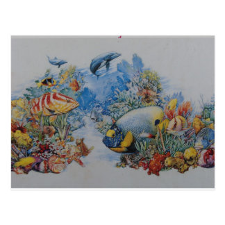 Coral and Tropical Fish Postcard