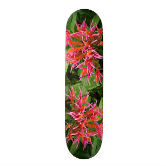Coral Aphelandra Skateboard