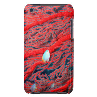 coral barely there iPod cases
