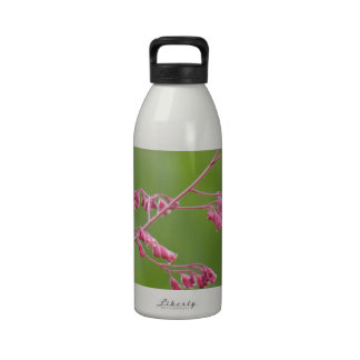Coral Bells on a Green Background Water Bottle