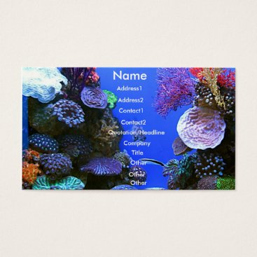 Professional Business Coral Business Card