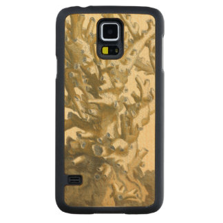 Coral by the Sea Carved® Maple Galaxy S5 Case