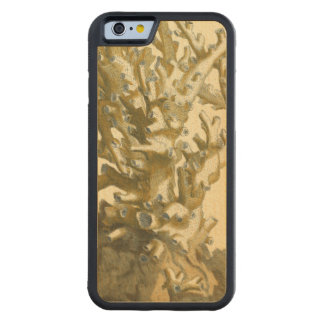 Coral by the Sea Carved® Maple iPhone 6 Bumper Case