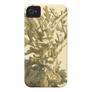 Coral by the Sea Case-Mate iPhone 4 Case