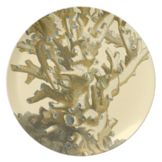 Coral by the Sea Dinner Plate
