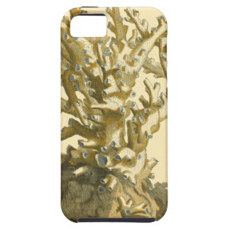 Coral by the Sea iPhone SE/5/5s Case