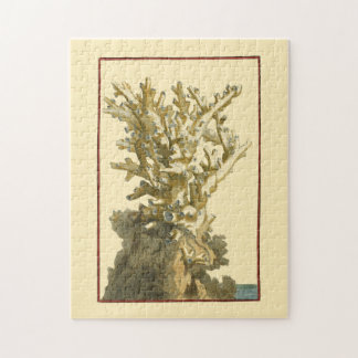 Coral by the Sea Jigsaw Puzzle