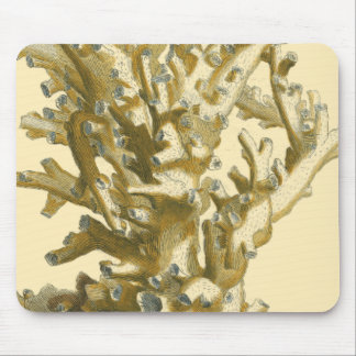 Coral by the Sea Mouse Pad