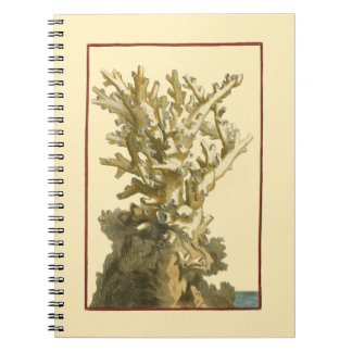 Coral by the Sea Notebook