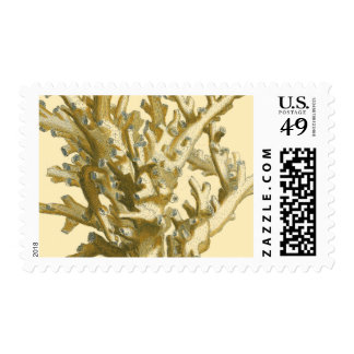 Coral by the Sea Postage