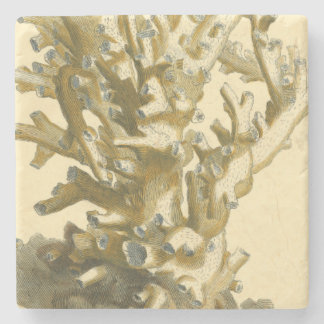 Coral by the Sea Stone Coaster