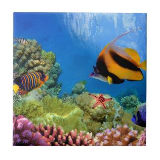 Coral colorido y pescados tropicales azulejo cuadrado pequeño