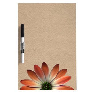 Coral Daisy on Shell background Dry Erase Board