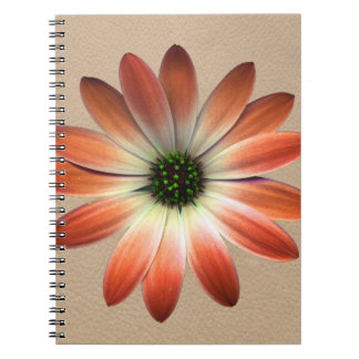 Coral Daisy on Shell background Notebook