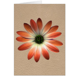 Coral Daisy on Shell Leather Print Greeting Card