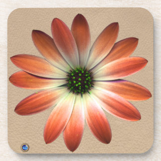Coral Daisy on Shell Leather Print Coaster