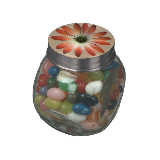 Coral Daisy on Shell Leather Print Glass Candy Jar