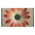 Coral Daisy on Shell Leather Texture iPad Folio Covers