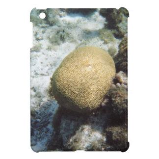 Coral de cerebro iPad mini cobertura