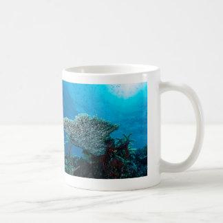 Coral de la placa en la taza de café de la gran