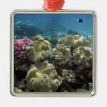 Coral, filón de Agincourt, la gran barrera de Adorno Navideño Cuadrado De Metal