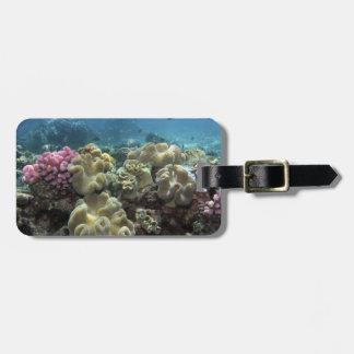 Coral, filón de Agincourt, la gran barrera de cora Etiqueta Para Maleta