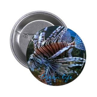 Coral fish ocean life button