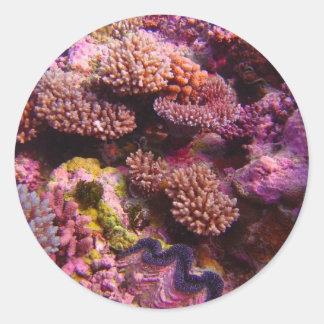 Coral_Garden--attribution share alike 2-0 Round Stickers