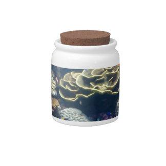 Coral Garden Candy Jar