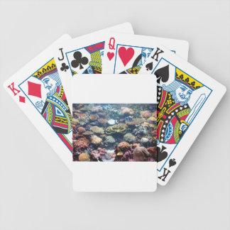Coral Garden Card Decks