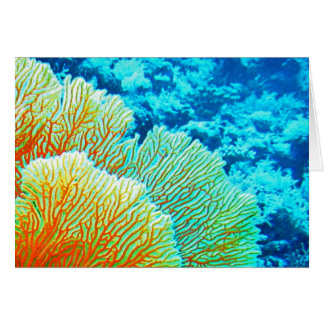 """""""Coral Graphic"""" ~ Greeting Card 5x7"""