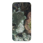 Coral iPhone 5 Cover