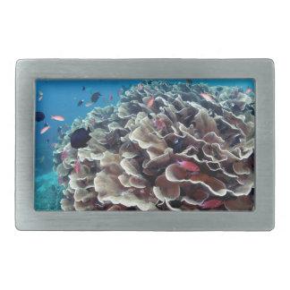 Coral Island Rectangular Belt Buckle