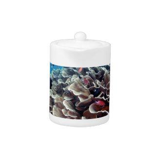 Coral Island Teapot