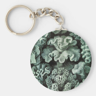 Coral Key Chain