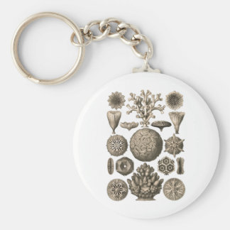 Coral Key Chains
