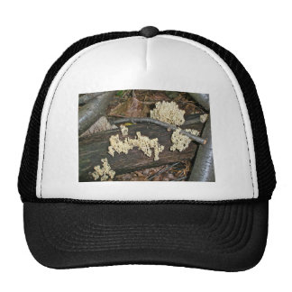 Coral Mushroom Coordinating Items Trucker Hat