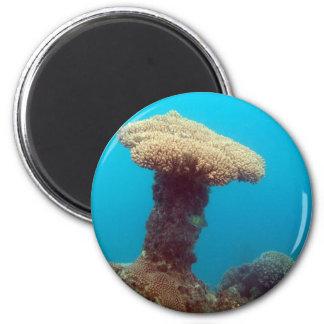 Coral Mushroom Fridge Magnet