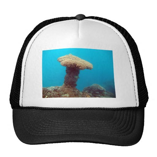 Coral Mushroom Trucker Hat
