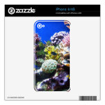 CORAL OUTCROP 1 iPhone 4 DECAL