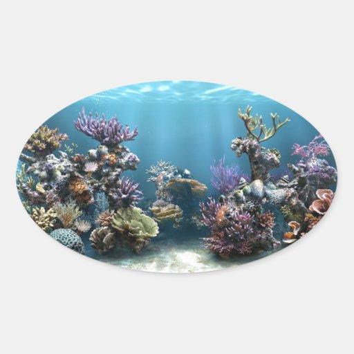 Coral Pegatina Ovalada
