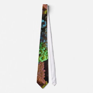 Coral Picture Under The Water Neck Tie
