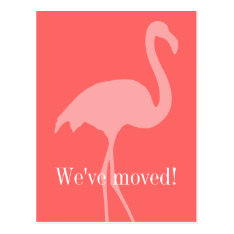 Coral Pink Flamingo Moving Postcards For New Home at Zazzle