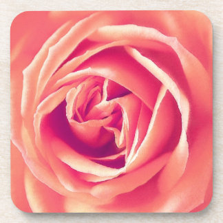 Coral pink rose print beverage coaster