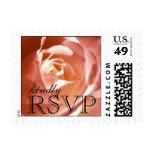 Coral Pink Rose Wedding RSVP Postage Stamps