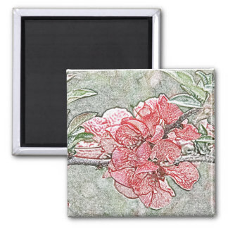 Coral quince magnet